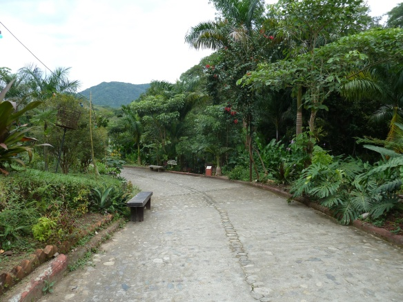 Road to the restaurant and gift shop